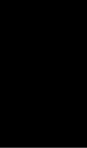 ib3 image